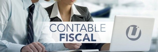 Contable Fiscal